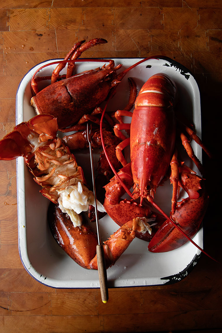 Kristin Teig Photography | Lobster Prep at Salt Water Farm
