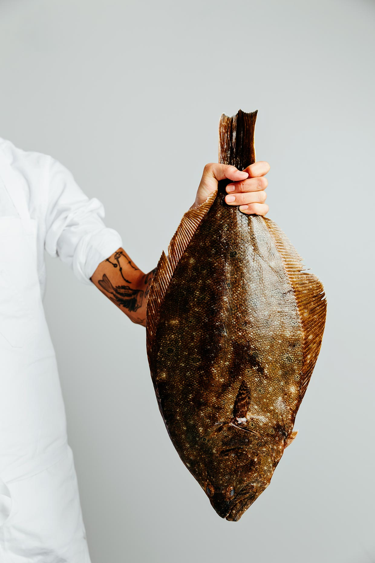 Fluke photographed for Kristen Kish Cooking