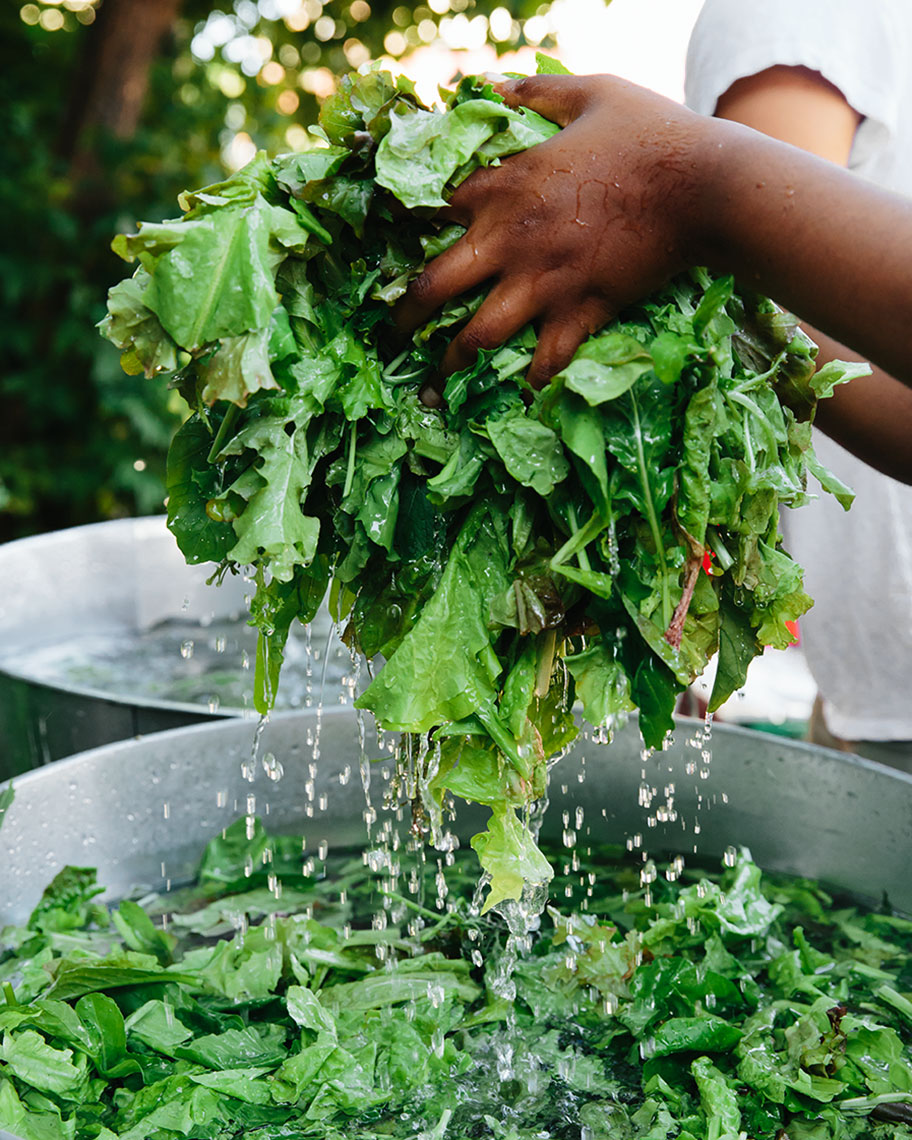 Kristin Teig Photography | Washing greens for Edible Boston