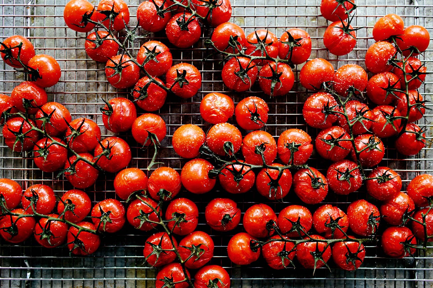 Roasted Tomatoes - Kristin Teig