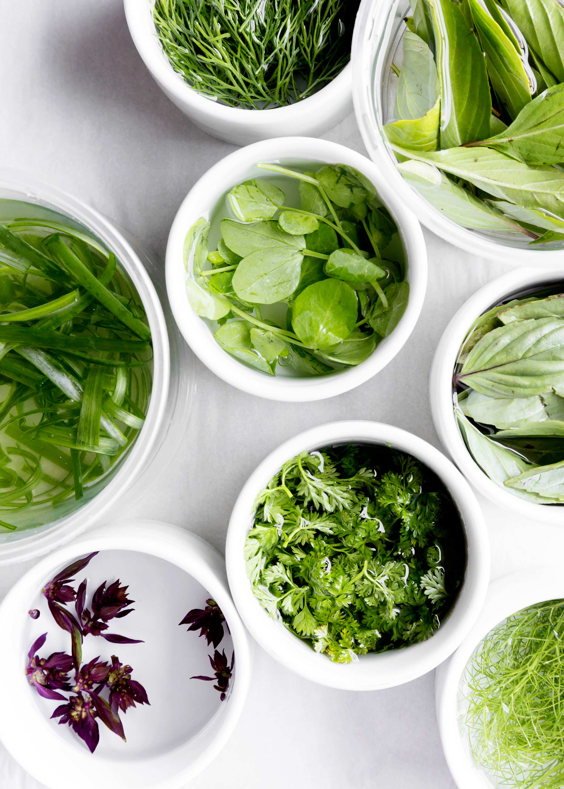 Herbs and microgreens
